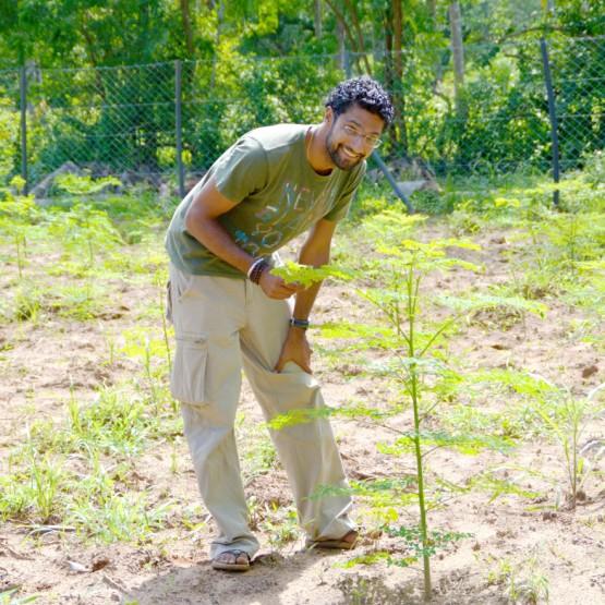 Tierra_deep_solo_farm